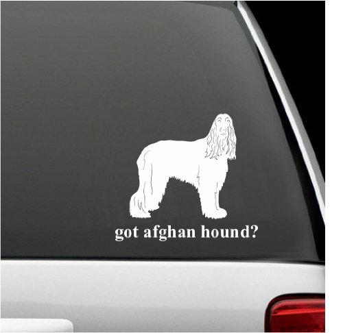 got afghan hound? White Decal Sticker Do - Got Afghan Hound Shopping Results
