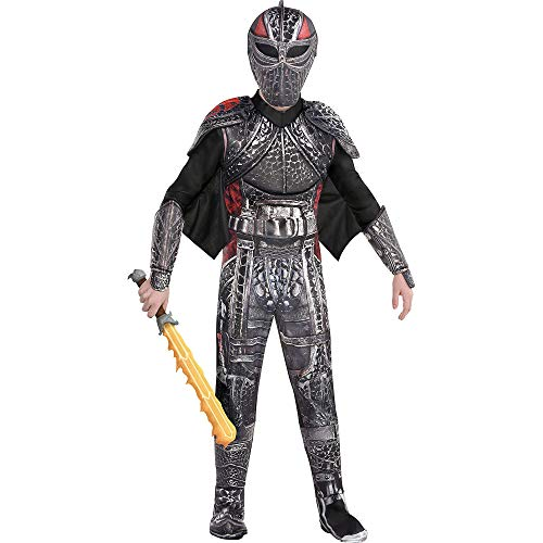 Party City Hiccup Halloween Costume for Boys, How to Train Your Dragon 3: The Hidden World, Medium, with