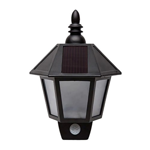 Hexagon Solar Light (MagiDeal Solar Power PIR Motion Sensor 2-LED Garden Wall Light Half Hexagon Lamp 2 Colors - White)