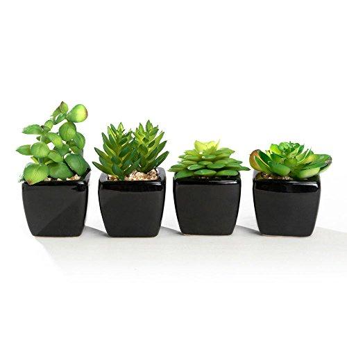 - Nattol Modern Mini Artificial Succulent Plants Potted in Cube-Shape White Ceramic Pots for Home Decor, Set of 4 (Black)