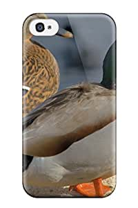 DanRobertse Case Cover Protector Specially Made For Iphone 4/4s Nature Birds Ducks Mallard Animal World
