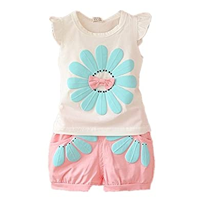 BibiCola Toddler Baby Girl Flower Clothing Sets Lovely Summer T-Shirt+ Floral Shorts 2pcs Kids Shorts Sets: Clothing