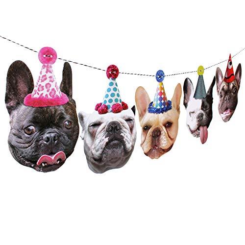 french bulldog birthday - 2