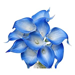 Angel Isabella, LLC 20pc Set of Keepsake Artificial Real Touch Calla Lily with Small Bloom Perfect for Making Bouquet, Boutonniere,Corsage (Royal Blue Trim) 26