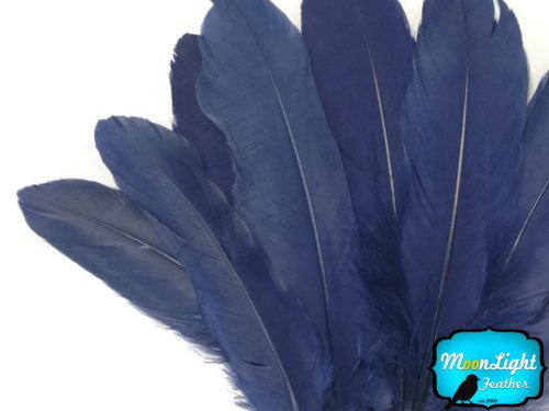 Navy Feather - Moonlight Feather | 1 Pack - Navy Blue Goose Satinettes Loose Feathers 0.3 Oz. Craft, Party, Jewelry, Costume Supplier