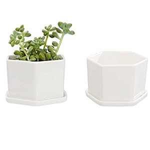 Mkono Ceramic Hexagon Succulent Plant Pot Cactus Plant Pot with Ceramic Tray,White 48