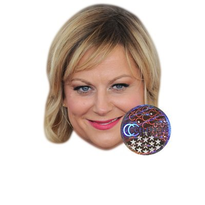 Amy Poehler Celebrity Mask, Card Face and Fancy Dress -