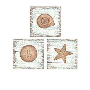 41mwbEg-28L._SS300_ Best Sand Dollar Wall Art and Sand Dollar Wall Decor For 2020
