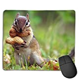 Non-Slip Mouse Pad Rubber Mousepad Funny Squirrel Print Gaming Mouse Pad 18 * 22 cm