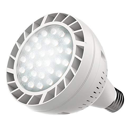 Opall Led Pool Bulb White Light 120v 50watt 6500k