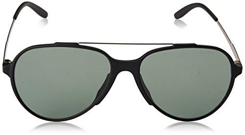 S CARRERA 118 Negro Carrera Black Matte Green Sonnenbrille zAxw8Ht