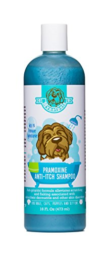 Mynetpets Pramoxine Anti-Itch Dog Shampoo For Dogs and Cats by, 16-Ounce. Alleviates Scratching and Flaking Caused by Seborrhea Dermatitis and Other Skin Disorders Pramoxine Anti Itch