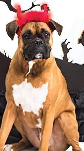 Kyjen Dogs & Co Halloween LED Light Devil Horns. One Size, Red]()