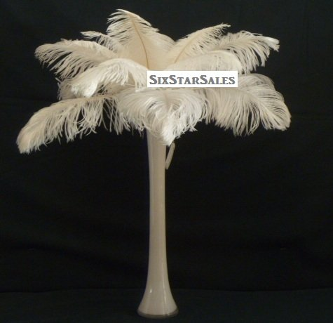 "SPECIAL LOT Wholesale Bulk Ostrich-White 100 Drab Ostrich Plumes-12-14"" Long-Wedding Eiffel Tower Feathers from Six Star Sales"