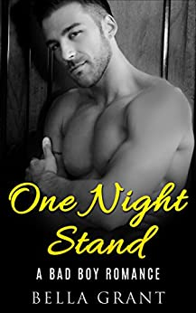 ONE NIGHT STAND Billionaire Romance ebook product image