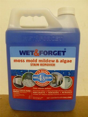 wet-and-forget-moss-mold-mildew-algae-stain-remover-net-075-gal-makes-45-gal