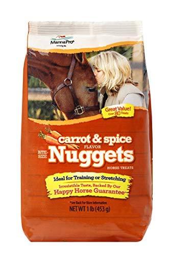 Best Horse Treats