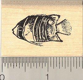 Queen Angelfish Fish Rubber Stamp