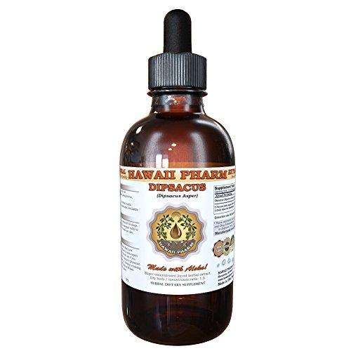 Dipsacus (Dipsacus Asper) Tincture, Dried Roots Liquid Extract, Xu Duan, Herbal Supplement 4 oz