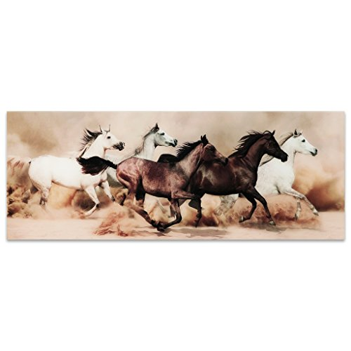 - Empire Art Direct Wild Horses Stampede Frameless Tempered Glass Panel Graphic Wall Art, 63