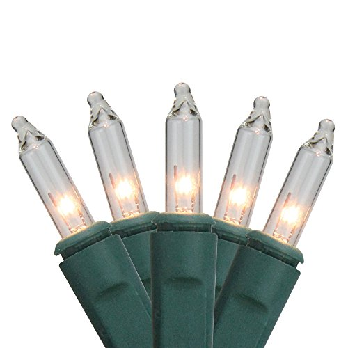 - Sienna Clear Twinkling Mini Net Style Christmas Lights with Green Wire, 4' x 6'