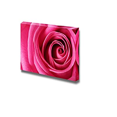 Canvas Prints Wall Art - Closeup of Pink Flower/Petal | Modern Wall Decor/Home Art Stretched Gallery Wraps Giclee Print & Wood Framed. Ready to Hang - 16