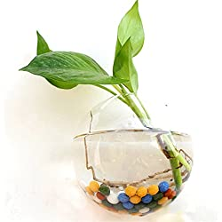 WXLAA 10cm Hanging Flower Pot Glass Ball Vase Terrarium Wall Fish Tank Aquarium Container