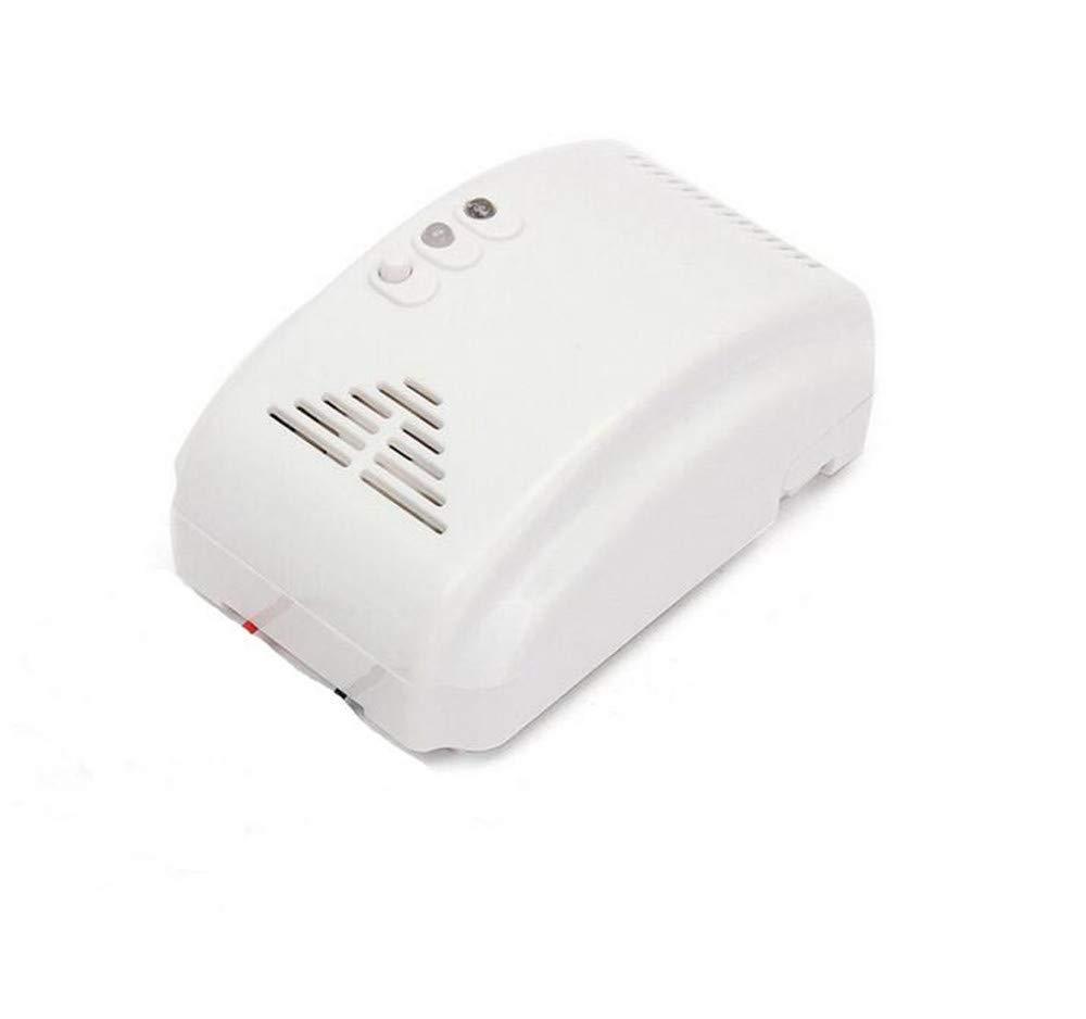 Detector de monóxido de carbono detectores fugas de Gas sonda ADVERTENCIA Co para Sensor de alarma de seguridad: Amazon.es: Hogar
