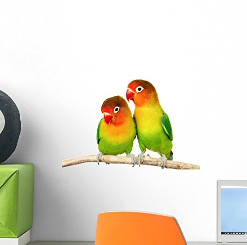 Wallmonkeys Pair Lovebirds Wall Decal Peel and Stick Animal Graphics (12 in W x 8 in H) ()