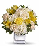 Roses Splendour - Flowers For Funeral - Funeral Flower Arrangements - Funeral Plants - Same Day Funeral Flowers - Condolence Flowers