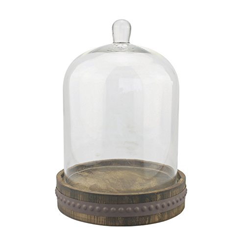 Stonebriar 9 Inch Clear Glass Dome Cloche with Rustic Wooden Base, Antique Bell Jar Display Dome, For Plants, Succulents, Fairy Lights, Photos, Medals, Decorative Fill, and More, Medium