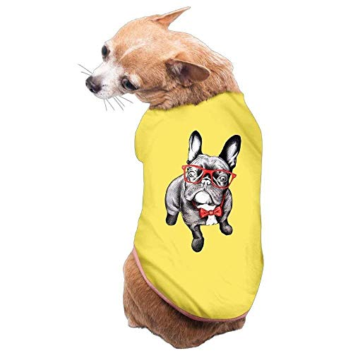 Buy dog food for cockapoo