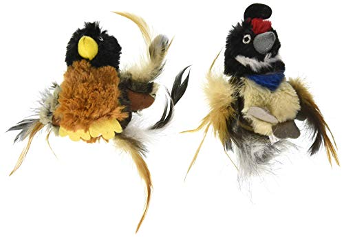 Pet Craft Supply Co. Batty & & Quirky Quail Funny Cuddling Chasing Irresistible Stimulating Soft Plush Boredom Relief Interactive Catnip Filled Cat Toy with Realistic Feathers (2 Pack) from Pet Craft Supply