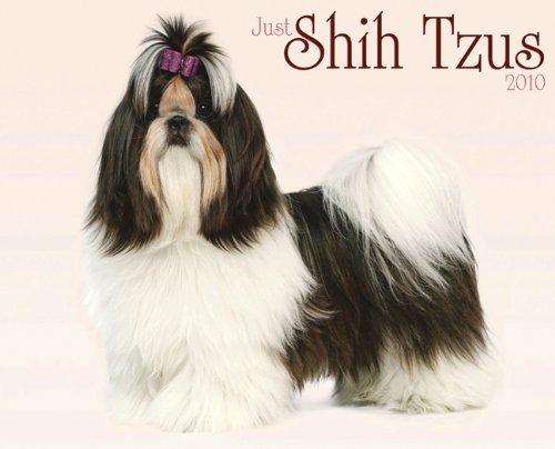 Just Shih Tzus 2010 Calendar (Shih Tzu 2010 Calendar)