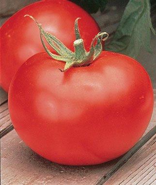 Burpee Better Boy Tomato Seeds 30 seeds