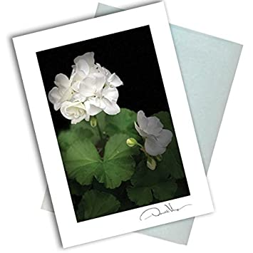 Amazon.com: Sola tarjeta de nota de flores en blanco. 3 x 5 ...