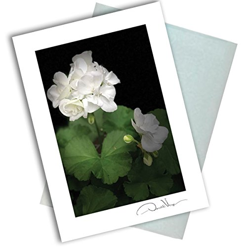 Single White Flower Note Card. 3x5 Blank Card with Classy Envelope. Best Birthday Cards, Thank You Notes, Invitations. Unique Christmas, Mother's Day & Valentines Gifts for Women, Men, Kids