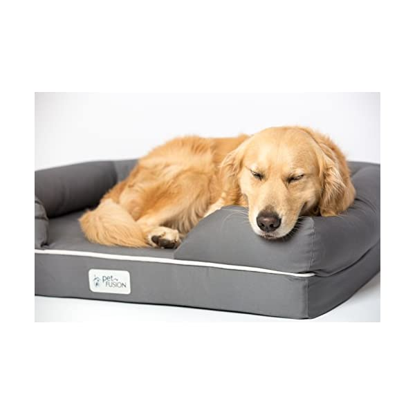 PetFusion Ultimate Dog Bed & Lounge. (Large Gray, 36 x 28 x 9.5). Premium Edition w/Solid 4 Memory Foam. [Replacement… Click on image for further info. 7