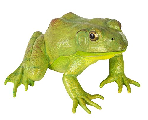 (Safari Ltd  Incredible Creatures American Bullfrog)