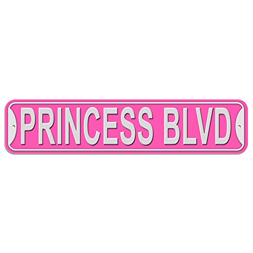 Princess Blvd Boulevard Sign - Plastic Wall Door Street Road Female Name - Pink