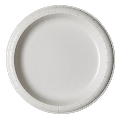 bulk paper plates Closeouts, bulk quantities, wholesale pricing, excellent customer service, and easy ordering are why you want to get paper products here.