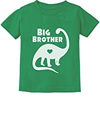 TeeStars - Big Brother Gift for Dinosaur Loving Boys Toddler/Infant Kids T-Shirt