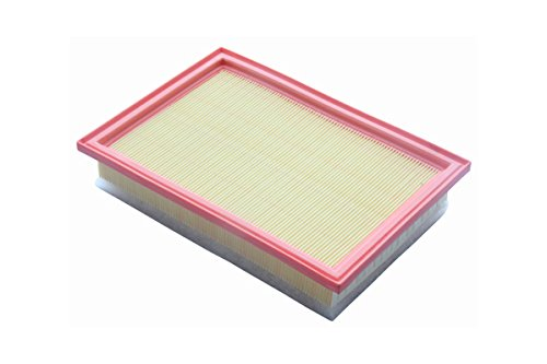TJ Filters QFA0122 Air Filter:
