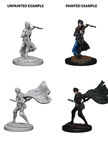 Pathfinder Roleplaying Game Unpainted Miniatures: Elf Female Rogue
