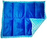 ReachTherapy Solutions))) Weighted Lap Pad for Kids & Adults - Portable Sensory Lap Blanket (5 lbs - Blue x 2) Click to See More Colors & Sizes