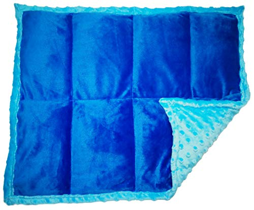 Cheap ReachTherapy Solutions))) Weighted Lap Pad for Kids - Portable Sensory Lap Blanket for School | 5 lbs - Blue x 2 | Click to See More Colors & Sizes Black Friday & Cyber Monday 2019