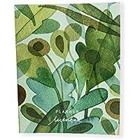 Planner Mensal - Maria Eugenia - Selva, Teca, HI0022, Colorido