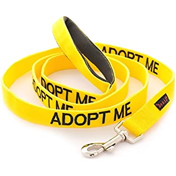 ADOPT ME Yellow Color Coded 4 Foot Padded Dog Leash (New Home Needed) Donate To Your Local Charity
