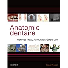 Anatomie dentaire (French Edition)