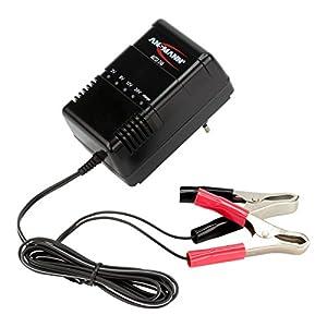 ansmann alcs 2 24a kfz ladeger t f r autobatterie roller. Black Bedroom Furniture Sets. Home Design Ideas